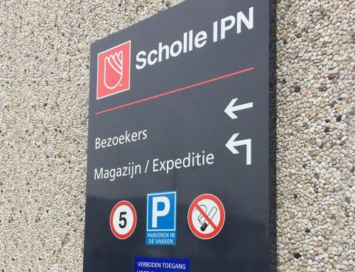 Scholle IPN